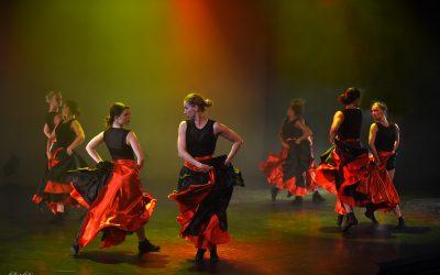 Cursus Flamenco